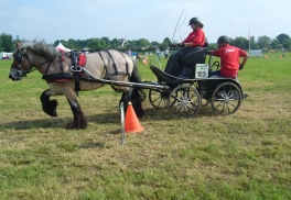 Kom gezellig naar de Land van Cuijkse Paardendagen op 8 en 9 juni in Haps.